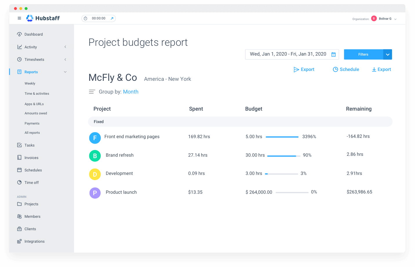 project cost report