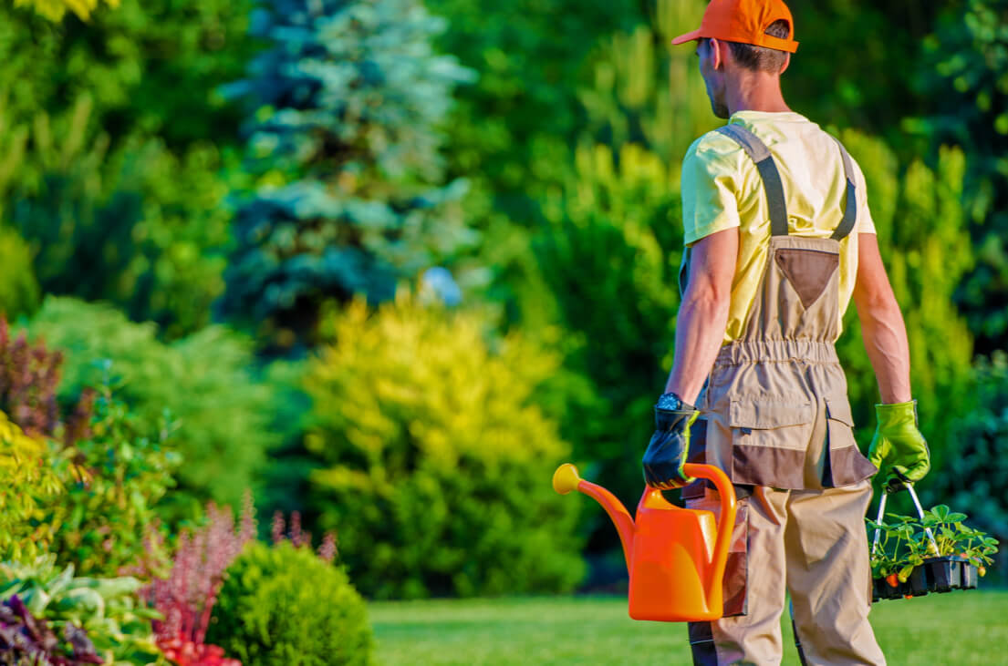 Healthy growth with time tracking for landscapers