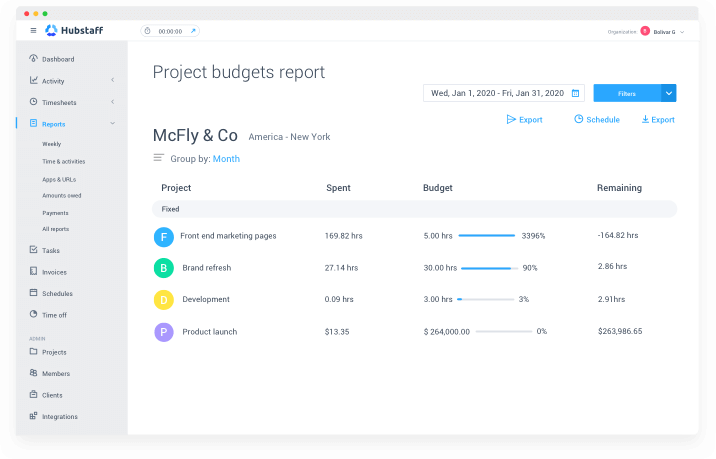 project budgets report